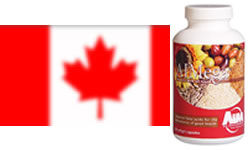 AIM Products in Canada